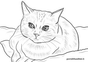 disegni-di-gatti-da-stampare-e-colorare-scaled